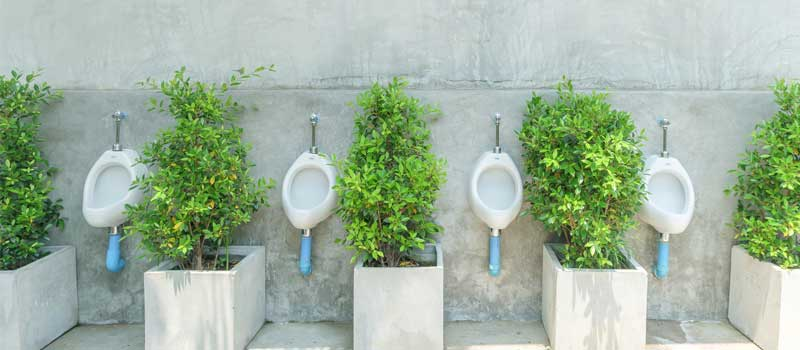 Waterless Urinal Products in Texas